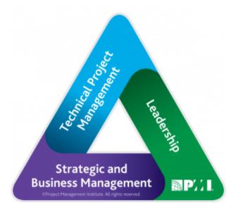 pmi leadership triangle
