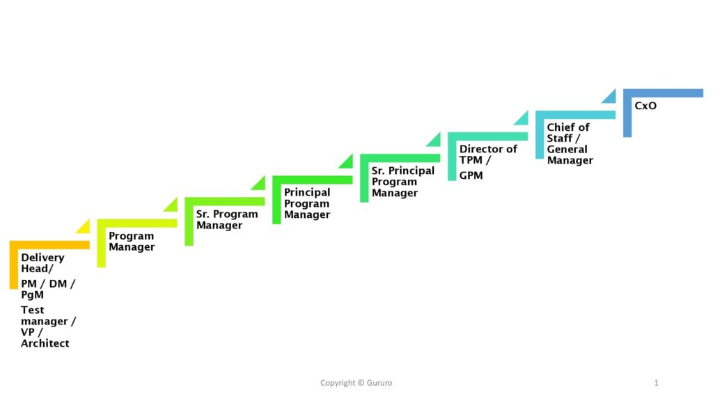 career progression of program manager